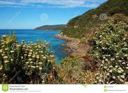beautiful landscape on great ocean road australia royalty free