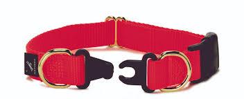collar safety awareness starts with you petsafe articles
