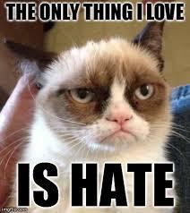 Love Hate Meme - grumpy cat reverse meme imgflip