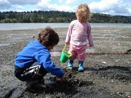 edible native plants pacific northwest into the wild edibles foraging with the whole family around puget
