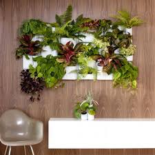 Interior Plant Wall Living Walls Bring Container Gardening Indoors Hgtv