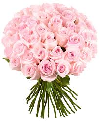 roses bouquet 51 light pink roses bouquet roseberry flowers miami order