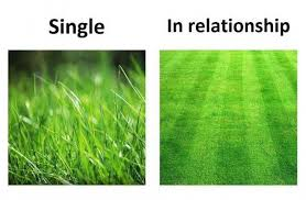 Grass Memes - dopl3r com memes single in relationship