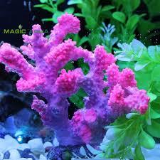 magic aqua pink color resin artificial sea marine coral ornament