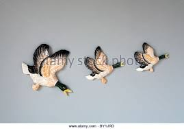 three flying ducks ornaments stock photos three flying ducks