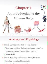 principles of anatomy and physiology chapter 1 ppt anatomical