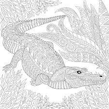 zentangle stylized crocodile alligator stock vector image