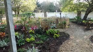 grass yard ideas on pinterest dog friendly best no lawn backyard