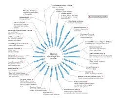 list of mendelian traits in humans
