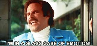 Glass Case Of Emotion Meme - i m in a hot glass case of emotion will ferrell wimzey happiness