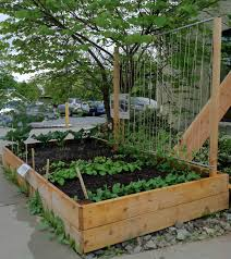 string bean trellis designs how to make a pea trellis
