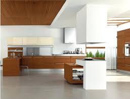 Kitchen False Ceiling Designs False Ceiling Designs For Kitchen Openall Club