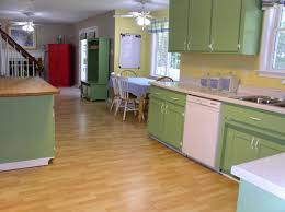 kitchen cabinets types designs and colors modern fancy in