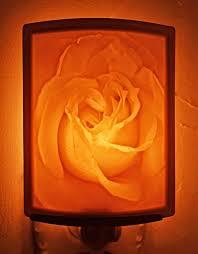 comp騁ence femme de chambre mariette s back to basics bernardaud votive roses