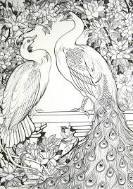 white peafowl and roses by houseofchabrier on deviantart batik