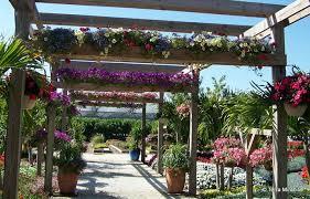 Plants For Pergolas by 40 Pergola Design Ideas Turn Your Garden Into A Peaceful Refuge