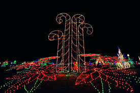 christmas lights in maryland ocean city s winterfest of lights shorebread