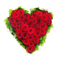 bouquet of roses bouquet of roses roses stock photo colourbox