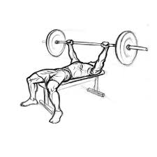 Chest Flat Bench Press Chest Exercises Bench Press With Barbell