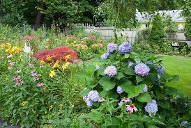 Backyard Flower Gardens by Lovely Back Yard Garden Full Of Perennial Flowers And Shrubs