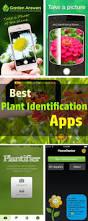 Flower Garden App by 64 Best Gardening Images On Pinterest Gardening Tips Flower