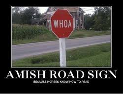 How To Read Meme - whoa amish road sign because horses know how to read horses meme