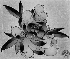 289 best peony mudan images on pinterest peonies tattoo