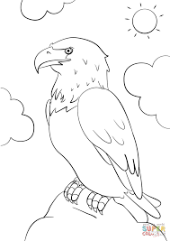 cartoon bald eagle coloring page free printable coloring pages