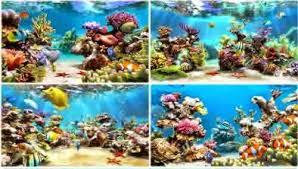 wallpaper ikan bergerak untuk pc wallpaper animasi bergerak aquarium hujan salju bbt blog baca