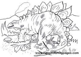 explore stegosaurus colouring pages dinosaur sturdy