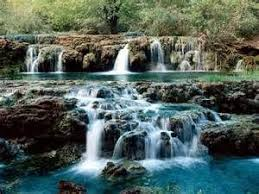 most beautiful flowers with waterfalls yahoo image search