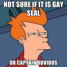 Seal Gay Meme - not sure if it is gay seal or captain obvious create meme