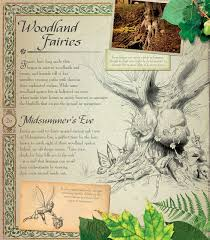 fairy world enter the magical and mysterious realm stella a