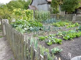 vegetable gardens home outdoor decoration