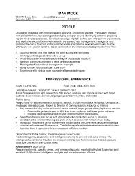 Example Of Video Resume by Examples Of Video Resumes Professional Resumes Sample Online