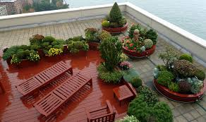 images about garden ideas on tomato plants and vegetable
