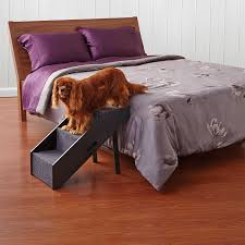 Telebrands Sofa Bed by Amazon Com Pawslifetm Deluxe Convertible Pet Step Ramp Pet
