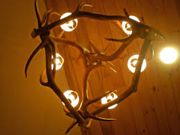 Diy Antler Chandelier Mad River Antler Oval Elk Chandelier 213