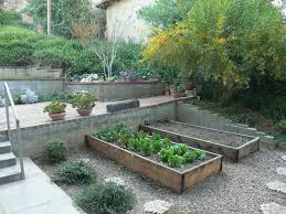 terraced garden beds for raised vegetable garden bed plus exposed