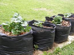 Potato Planter Box by Tater Totes Potato Grow Bags 7 Steps With Pictures