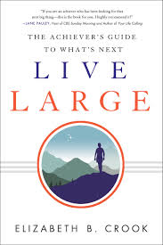 live large the achiever u0027s guide to what u0027s next elizabeth b