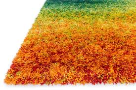 Blue Fuzzy Rug Contemporary Area Rugs Orange And Blue U2013 Modern House