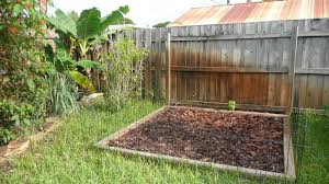 gardening south florida style south florida vegetable garden in here is my heirloom vegetable garden the seeds that are sown here corn tomatillo three different tomatoes