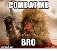 Come At Me Meme - come at me bro gifsforum corn menn ogen meme on me me