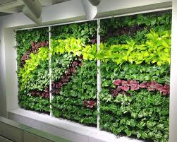 Garden Wall Planter by Vertical Wall Planters Vertical Wall Garden Vertical Gardening