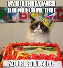 Happy Birthday Cat Memes - cat memes happy birthday cat memes funny cat memes pictures