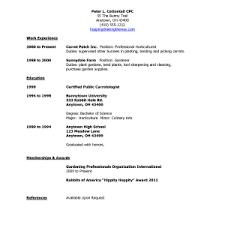No Job Experience Resume Template Resume Template High Student No Experience Resume Job Pluwk