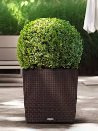self watering planter cube planter cottage wicker self watering 16