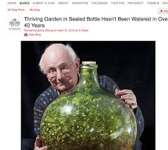 sealed bottle garden garden in a bottle 40 years my web value