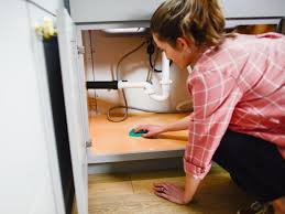 how to clean cupboards after pest how to get rid of roaches and ants in the kitchen hgtv